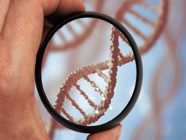 Прозрачный новый мир. ДНК-генеалогия против семейных тайн, убийств и расовой дискриминации