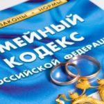 Статья 113 СК РФ. Определение задолженности по алиментам (действующая редакция)
